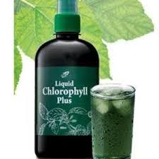 nn-liquid-chlorophyll-plus-01